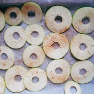 Cinnamon dusted apple slices